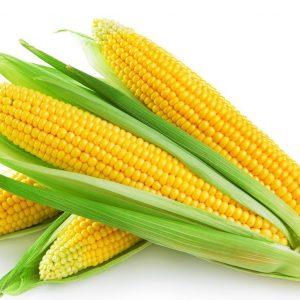 玉米-umshare聯合分享網